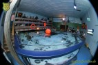 4. Club-Turnier Dresden - Sea Life #26